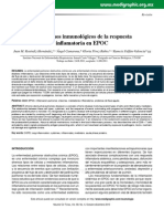 mecanismos inmunologico en EPOC