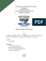 INFORME PROYECTO INTEGRADOR.docx