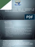 CONTENIDO DE DEFENDEDORA PROFESIONAL
