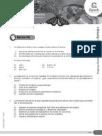 GUÍA 4 ELEC Organización Del Sistema Nervioso II