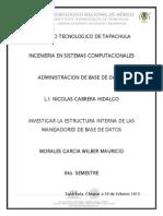 Estructura Interna de Las Manejadores de Base de Datos