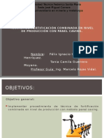 ppt oficial.pptx