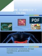 Colera y Sindrome Diarreico