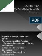 06. LÍMITES A LA RESPONSABILIDAD CIVIL.ppt