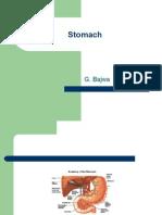 Stomach Modified Bajwa