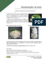 49_Propagacao_In_Vivo_(Repolho).pdf