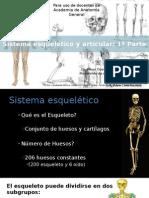Sistema esquelético y articular 1a Parte ED FINAL.ppsx