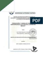 TesisMC_ Cadena de Suministro Local Hortícola en Texcoco