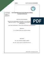 PROCESO DE ENFERMERIA APLICADO A UNA USUARIA DE DIABETES MELLITUS TIPO II