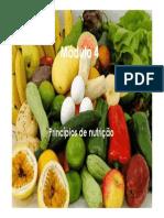 Princípios de Nutrição