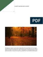 Fenomene Care Nu Au Putut Fi Explicate Pana in Prezent.pdf