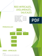Ordo Myricales, Juglandales, Salicales