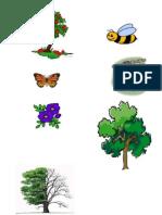 gambar2 pohon
