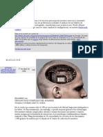 50 Mitos y Verdades Sobre El Cerebro