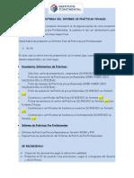 Indicaciones Informe de Prácticas Pantoja