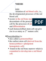 Erythropoiesis Completed Notes PDF
