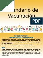 2015 vacunas esquema