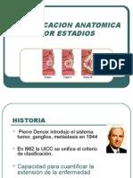 Clasificacion Anatomica Por Estadios