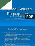 Fisiologi Saluran Pencernaan