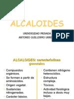 ALCALOIDES+2012+-+SESION+12