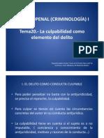 Tema 20  Penal I