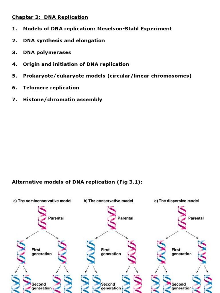 7 1 Dna U0026 Replication Manual Guide