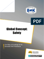 5-Global-Safety.pdf