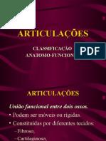 Articulações-resumo (1)