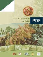 Revista Cultivo Tara
