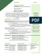 Curriculum Vitae Modelo4b Verde