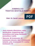 03. Embriologi Genitalia Wanita-thn Lalu