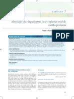 Abordajes Quirurgicos Para La Artroplastia Total de Rodilla Primaria