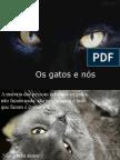 OS_GATOS_E_NÓS