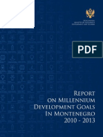 mdg progress report 2013 eng