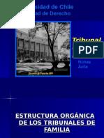 Estructura de Los Tribunales de Familia