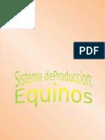 Guia Didactica Equinos FM Rev-ZaII I-nuevo