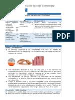 CTA1_U2-SESION9.docx