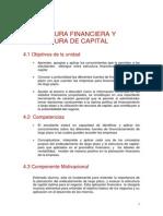 Estructura_financiera_y_estructura_de_capital.pdf