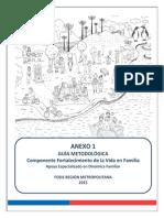 Guia Metodologica Accion en Familia