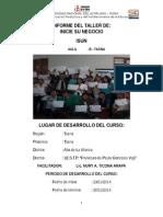 Informe ISUM 2015 Tacna.docx
