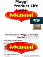 Maggi the Product Life Cycle