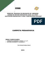 CARPETA PEDAGOGICA JAE 2015 RICHARD.pdf