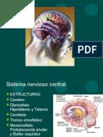 Sistema Nervioso Central 1