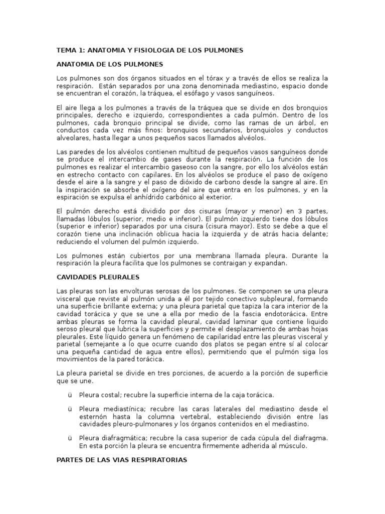 Tema 1. Anatomia y Fisiologia Del Pulmon