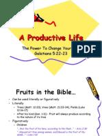 Lesson 11 - A Productive Life