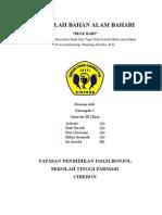 MAKALAH BULU BABI.doc