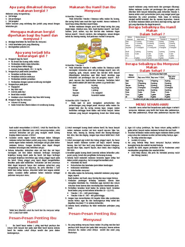 Leaflet MAkanan Bergizi Untuk Ibu Hamil Dan Menyusui