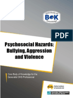 21-Hazard-Bullying.pdf