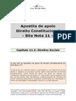 Apostila de Apoio-cap 12 3-Direitos Sociais v2