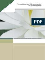 perfilIB.pdf